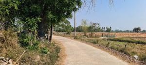 For SaleLandKhon Kaen : Beautiful land for sale, almost 1 rai (381 sq m), price 780,000