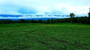 For SaleLandPhetchabun : A beautiful plot of land with a view of Khao Kho, Phu Thap Boek, Phu Lom Lo, surrounding Baan Na Sam, Lom Kao District, Phetchabun Province.