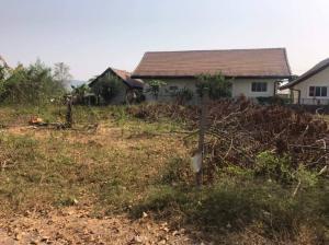 ขายที่ดินเชียงราย : ขายที่ดินเปล่า  บ้านป่าป้อง อ.ดอยสะเก็ด