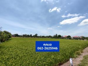 ขายที่ดินบางใหญ่ บางบัวทอง ไทรน้อย : ที่นนทบุรี แปลงสุดท้ายผ่อนได้(ฟรีดอกเบี้ย+ถมที่)‼️