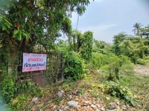 For SaleLandBang kae, Phetkasem : ขายด่วน!! ที่ดิน 3-3-6.5 ไร่ ซอยเพชรเกษม 36 แยก 1