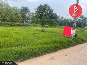 For SaleLandKorat KhaoYai Pak Chong : Land for sale 1 rai 1 ngan Sikhio Nakhon Ratchasima