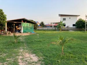 ขายที่ดินพะเยา : ขายที่ดินราคาถูก จากถนนหลวงสายพะเยาป่าแดด-เชียงราย