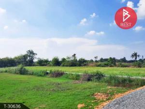 For SaleLandNakhon Pathom, Phutthamonthon, Salaya : Land for sale 3 rai 2 ngan 50.8 square meters Bang Len - Don Tum, Nakhon Pathom.