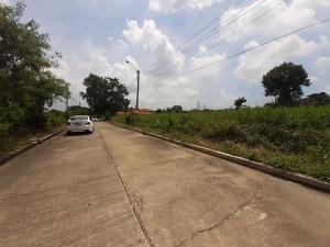 For SaleLandRamkhamhaeng,Min Buri, Romklao : Land for sale 75 sq m. Village Flora Ville. Livable Community Projects >> Soi Suwinthawong 38