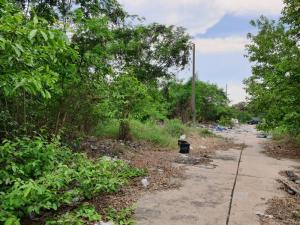 For SaleLandNakhon Pathom, Phutthamonthon, Salaya : Land allotment for sale, size 240 sq.w., 2 plots, 120 square wa, Soi Parichat Village, near Phutthamonthon Sai 4 Road, only 1 km sq m, 20,000 baht each, negotiable, kind seller 085-689-8880 LINE : vmayda