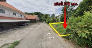 For SaleLandChiang Mai : 🌳 Land for sale 170 square wah 🌳 Nong Kaeo Hang Dong.