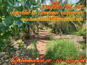 For SaleLandRathburana, Suksawat : Urgent !! Cheap price, 761 square wa of land for sale. Perfume coconut plantation, Phra Pradaeng