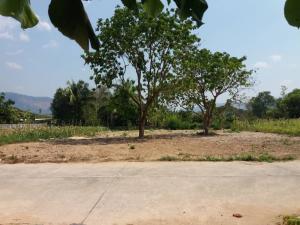 For SaleLandNakhon Nayok : Land for sale in Nakhon Nayok Province Near Wang Ta Krai Waterfall