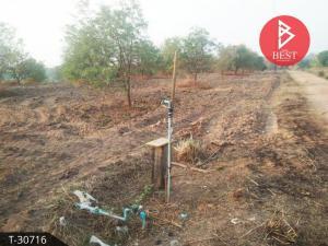 For SaleLandPhetchabun : Land for sale with Makham plantation, land area 3 rai, Rawang Subdistrict, Mueang Phetchabun District
