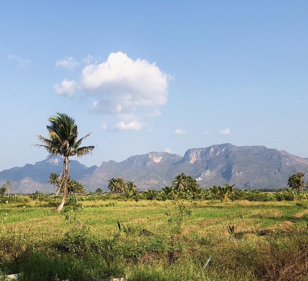 For SaleLandHua Hin, Prachuap Khiri Khan, Pran Buri : Land in a very beautiful location, Sam Roi Yot, Prachuap
