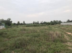 ขายที่ดินขอนแก่น : ขายที่ดินติดถนนเส้นหลักพื้นที่ 8 ไร่ 16 ตร.วา อ.บ้านฝาง จ.ขอนแก่น