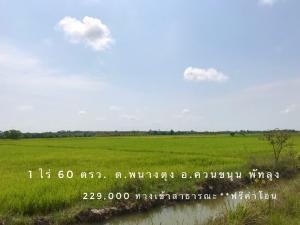 For SaleLandPhatthalung : Cheap small plot of land