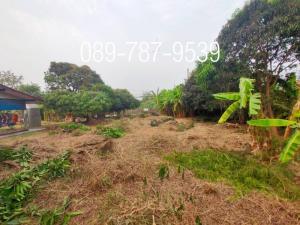 For RentLandNakhon Pathom, Phutthamonthon, Salaya : Land for rent , area 1 rai near Tha Chalab Railway Station , Nakhon Pathom Province