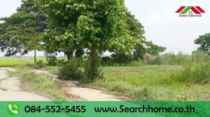 For SaleLandAyutthaya : Land for sale 249 sq m. M. Arisara Place 2, land reclamation, Lakchai Road, Lat Bua Luang, suitable for building houses and agricultural gardening, contact 084-5525455