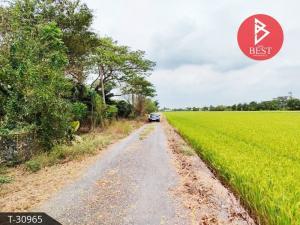 For SaleLandRangsit, Thammasat, Patumtani : Land for sale, area 1 ngan, good location, Nong Suea District Pathumthani Province