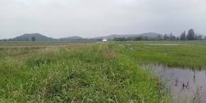 ขายที่ดินราชบุรี : ที่ดินวิวสวย ธรรมชาติเงียบสงบ ไร่ละ 280000 เขาขลุง บ้านโป่ง ราชบุรี