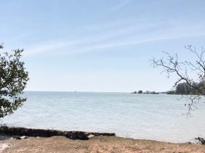 For SaleLandRayong : Land for sale, adjacent to the sea Private beach, 200 meters wide, Klaeng District, Rayong Province