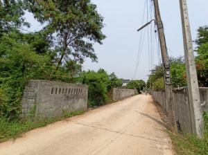 For SaleLandKhon Kaen : Land for sale YE-77, Ban Non Muang, Sila, Khon Kaen, 2 Ngan Sila Khonkaen