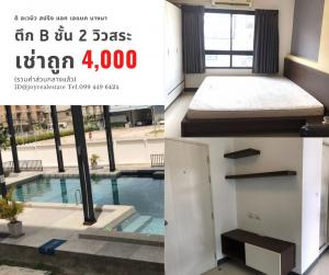 For RentCondoBangna, Lasalle, Bearing : Condo for rent, The Avenue Spring @ ABAC Bangna, 2nd floor, Building B, pool view, rent, price 4,000 baht.