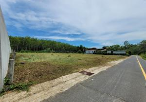 For SaleLandPhuket, Patong : Land in Thalang Phuket