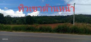 For SaleLandKorat KhaoYai Pak Chong : Land title deed 100 sq m. Khao Yai.
