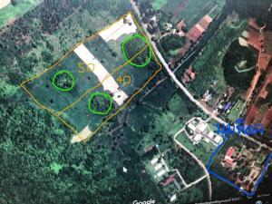 For SaleLandKanchanaburi : Land for sale 50 Rai, Sai Yok District, Kanchanaburi Province