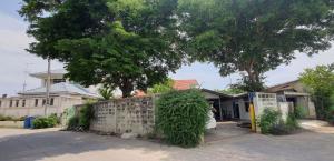 ขายบ้านนครปฐม พุทธมณฑล ศาลายา : บ้านเดี่ยวพร้อมที่ดินราคาถูก(ตัวเมืองนครปฐม)