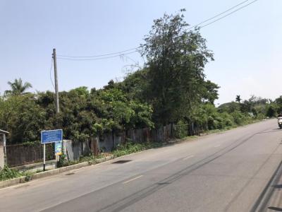For SaleLandLamphun : Land for sale on four lanes road, San Mueang Road, Mueang, Lamphun Subdistrict