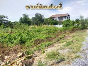 For SaleLandNakhon Pathom, Phutthamonthon, Salaya : Land for sale 300 square meters, village Sompong (Khlong Yong - Salaya) suitable to build a house.
