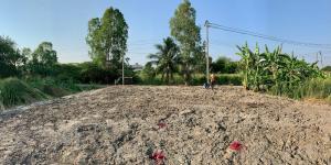 For SaleLandNakhon Pathom, Phutthamonthon, Salaya : Want to sell land reclamation, Phutthamonthon Sai 3, the owner sells by himself