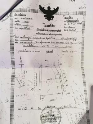 For SaleLandChiang Mai : Urgent sale, Chiang Mai land, 36 rai, 3 ngan, 70 square wa, 1.6 million per rai.