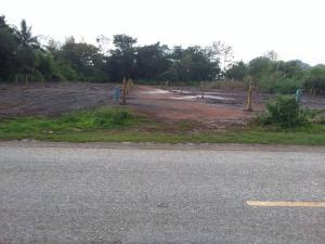 For SaleLandChiang Rai : Land for sale on the road, near the city of Chiang Rai, Tarawa, 6500 baht.