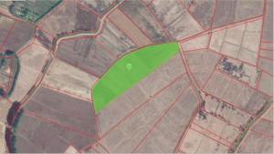 For SaleLandPhetchabun : Land for sale 7 rai of rice fields over Thaibun Subdistrict, Lom Sak, Phetchabun.