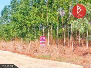 For SaleLandSa Kaeo : Sell a small plot of land for building a house, Tha Kasem Subdistrict, Mueang Sa Kaeo