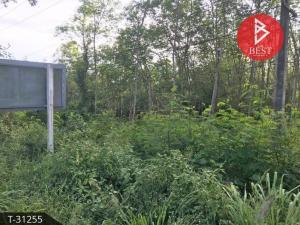 For SaleLandPhatthalung : Land for sale 8 rai 1 ngan 37.0 square meters Phatthalung Pa Bon near Petchkasem Road.