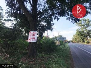 ขายที่ดินพัทลุง : ขายที่ดินเปล่าพร้อมสวนยาง เนื้อที่13 ไร่ 3 งาน 35.6 ตารางวา อำเภอป่าบอน จังหวัดพัทลุง