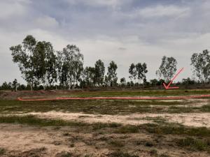 For SaleLandRoi Et : Announcement of land for sale