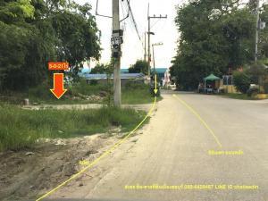For SaleLandPattaya, Bangsaen, Chonburi : Land for sale 5 rai, Nong Tamlueng, Phan Thong, Chonburi.