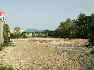 For RentLandPattanakan, Srinakarin : Land for rent 170 square wah, Srinakarin-Romklao road, new cut 25,000 baht