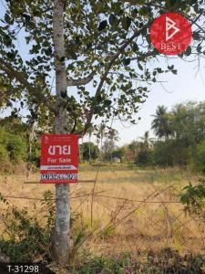 For SaleLandAng Thong : Land for sale 3 rai 1 ngan 76 square wa seeking angthong.