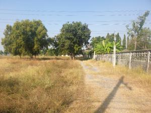 For SaleLandRangsit, Thammasat, Patumtani : Land for sale in Si Saman Near Robinson Srisamarn, area 24 rai 3 ngan 57 square meters
