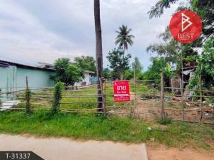 For SaleLandCha-am Phetchaburi : Land for sale, house planting, area 1 ngan, Cha-am, Phetchaburi