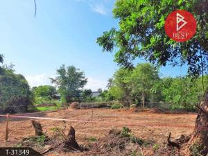 For SaleLandHua Hin, Prachuap Khiri Khan, Pran Buri : Land for sale 88.0 square meters of land, Pak Nam Pran, Prachuap Khiri Khan