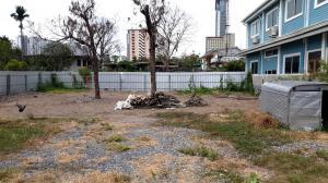 For RentLandRattanathibet, Sanambinna : Land for rent 200 sq m, Soi Rewadee 40, good location, accessible in 2 ways, 40 and 42.