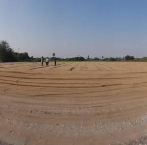 For SaleLandNakhon Pathom, Phutthamonthon, Salaya : SLJ038 Land for sale 4 rai 134 square wa, Bang Len, Nakhon Pathom, can issue a license, factory Rong 4