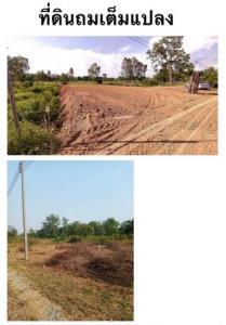 ขายที่ดินอ่างทอง : ขายที่ดินแปลงสวย ถมเต็มแปลงติดถนนเส้น สิงห์บุรี อ่างทอง