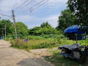 For SaleLandKorat KhaoYai Pak Chong : Land for sale 274 wa Mittaphap, Save one market.