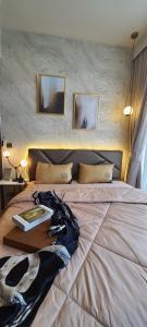For RentCondoSukhumvit, Asoke, Thonglor : WoW Price !! Celes Asoke BRAND NEW ROOM + NICE DECOTRATE!