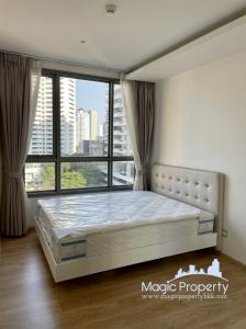 For RentCondoSukhumvit, Asoke, Thonglor : 1 bedroom condominium for rent in H Sukhumvit 43, Khwaeng Khlong Tan Nuea, Khet Wattana, Bangkok.